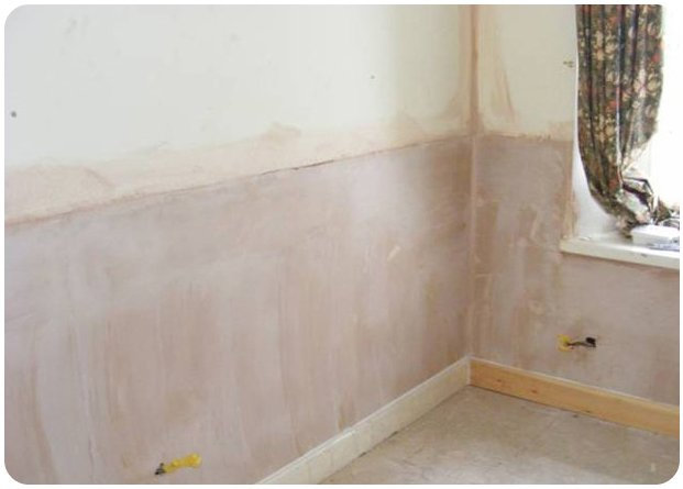 Wall that has been freshly plastered after rising damp.